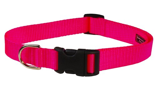 【Sassy Dog Wear 5/8 x 10-14 Nylon Webbing Dog Collar Small Neon Pink by Sassy Dog Wear】 Sassy Dog Wear 5/8 x 10-14 Nylon Webbing Dog Collar Small Neon Pink by Sassy Dog Wear b00cpnze10