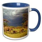 【3drose Danita Delimont 象 African Elephant Herd、セレンゲティ国立公園、tanzania-af45 aje0223 アダム・ジョーンズ マグカップ 11 oz ホワイト mug_71689_6】 b01jqggu20