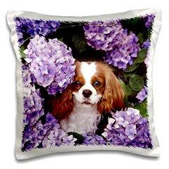 【フローレン犬 Cavalier King Charles Spaniel 枕ケース 16x16 inch Pillow Case pc_61913_1】 b0166yxk28[生活総合倉庫 楽天市場店]