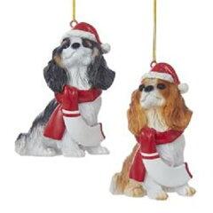【Kurt Adler 3.9 樹脂クリスマスCavalier King Charles Spanielオーナメント2 / asstd】[生活総合倉庫 楽天市場店]