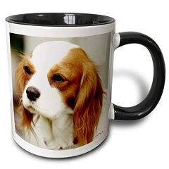 【3drose VWPics Northern Spaniel Cavalier King Charles Spaniel マグカップ 11 oz ホワイト mug_46182_4】 b01351ji76[生活総合倉庫 楽天市場店]