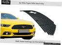 グリル 2015-2017フォードマスタングのRegのロゴは、アッパー...