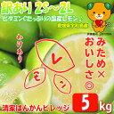 国産 家庭用・訳ありレモン 5kg【送料無料】みため×おいし...