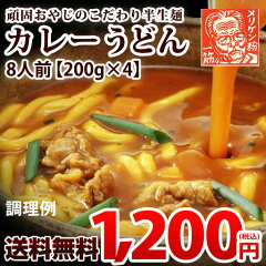 送料無料 カレーうどん1杯当たり150円! 美味しいカレーうどん 讃岐うどん 半生麺使用 頑固…
