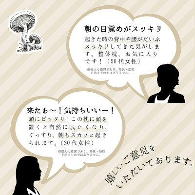 https://image.rakuten.co.jp/seitailab/cabinet/05960483/imgrc0113915369.jpg