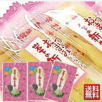 岩下の新生姜47g×3袋1000円ポッキリメール便送料無料セール