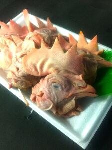 鶏頭 1kg 国産鶏 親鳥 親鶏 ひね鳥 業務用