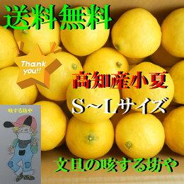 【送料無料】高知産小夏家庭用約5KgS〜Lサイズただし北海道沖縄は送料500円のご負担お願いします。