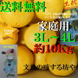 【送料無料】高知産土佐文旦超大玉3L〜4L約10Kg家庭用 北海道沖縄は送料500円のご負担お願いします。2月なかばより順次発送いたします。