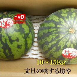 【送料無料】高知産大玉すいか2玉入りただし北海道沖縄は、送料500円のご負担お願いします。