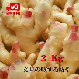 【送料無料】高知産ハウス新生姜2Kgただし北海道沖縄は送料500円のご負担お願いします。