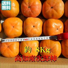 【送料無料】高知産次郎柿甘柿約8Kgただし北海道沖縄は送料500円のご負担お願いします。