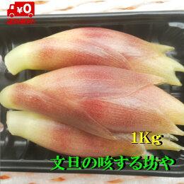【送料無料】高知産みょうが約1Kgただし北海道沖縄は、送料500円のご負担お願いします。