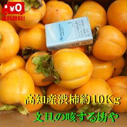 【送料無料】高知産大玉渋柿約15Kgただし北海道沖縄は送料500円のご負担お願いします。