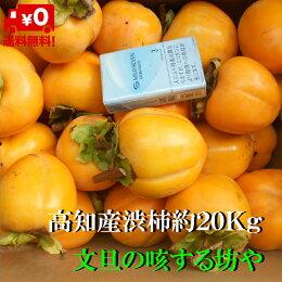 【送料無料】高知産大玉渋柿約20Kgただし北海道沖縄は送料500円のご負担お願いします。
