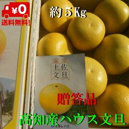 【送料無料】高知産大玉ハウス水晶文旦約5Kg秀品化粧箱入りただし北海道沖縄は送料500円のご負担お願いします。
