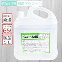 《在庫あり 即納》【国産 除菌用アルコール】IGコール65