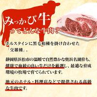 みっかび牛サーロインステーキ冷凍産地直送送料無料