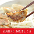 B級グルメ 【浜松】浜松餃子 20個入り