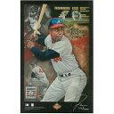 ハンク・アーロン グッズ MLB ブレーブス 殿堂入り記念 11 x 17 リミテッド リトグラフ 絵画