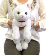 オッドアイ ぬいぐるみ おもちゃ キャラクター プレゼント ランキング デイリー