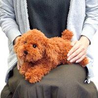 ひざわんこトイプードルBR(P-3032)【送料無料】(犬、いぬ、イヌ、ぬいぐるみ、人形、玩具、おもちゃ、キャラクターグッズ、プレゼントに最適)