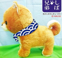 豆しば三兄弟BIG豆太郎32cm(10月下旬入荷予定。好評予約受付中)【送料無料】(イヌ、いぬ、柴犬、ドッグ、人形、玩具、おもちゃ、ぬいぐるみ、キャラクターグッズ)