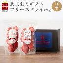 ギフト 冷凍完熟あまおう イチゴ フリーズドライ 40g(20g×2袋) 苺 福岡県産 産地直送 プレゼント