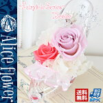 【天然ダイヤモンドパウダー入りプリザーブドフラワー・プリンセスヴィランス】ローズバラプリザーブドアレンジ花御見舞い【フラワーギフト】