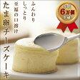 【たま卵チーズ】 一番人気 ひとくちチーズケーキ 8個入り TVや多くの芸能人にも話題の大阪土産 新大阪駅&通販限定販売 ふわとろ半熟スフレチーズケーキ たまらんチーズ franchiseフランシーズ