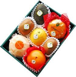 千疋屋総本店(せんびきや)特選季節の果物詰合(1)