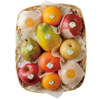 Senbiki Shop Home Office (sennbikiya) seasonal fruits refill case (3)