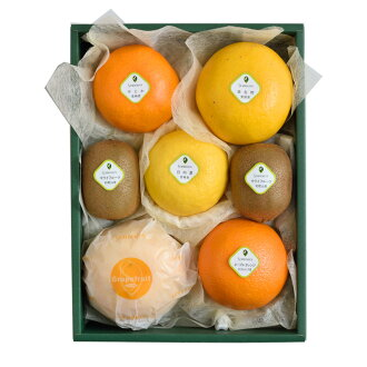 Senbiki Shop Home Office (せんびきや) seasonal fruits refill case (1)