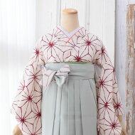 2尺袖着物単品(メイン画像)