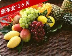 京橋千疋屋 フルーツ頒布会Aデラックスコース12ヶ月(21,000円×12ヶ月)