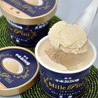 ギフトにも!プレミアムアイスクリーム〈ミレピーニ〉6個セットN-6749