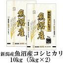 新米 お米 10kg(5kg×2) 新潟県魚沼産コシヒカリ 令和元年産