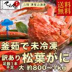 【松葉がに お試し足落ち1本 送料無料!!】プロが釜茹でした極上の『松葉がに』(ボイル)茹でたて未冷凍のタグ付 松葉がに1匹入大(800-1kg)松葉がに 津居山港 まつばがに 松葉カニ 松葉ガニ 日本海 松葉ガニ 未冷凍 かに