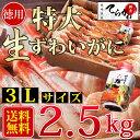 【生食OK!かに2.5kg/3Lサイズ 送料無料】獲れたてを急速冷凍!お刺身でも食べれる新鮮度抜群!生ずわい 蟹 足(内容量:約2.5kg/3L/約4?9人前)かに カニ かに2.5kgかに 生食 かに 御歳暮 ズワイガニ 20P18Jun16