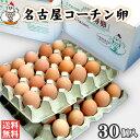 【送料無料】名古屋コーチン卵30個入(破損保証3個を含む)