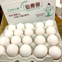 【コロナ対策支援 送料無料】30%OFF 訳有り白卵80個入り(破損保証6個を含む)