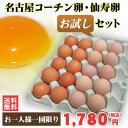 【送料無料】名古屋コーチン卵仙寿卵お試しセット