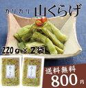 【送料無料】純正梅肉エキス(チューブ)40g【smtb-k】【kb】※送料については、北海道は400円、沖縄は600円別途ご負担となります。
