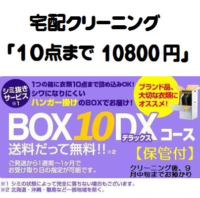 クリーニング 詰め放題 「BOX-10-DX 保管付」