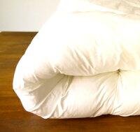 【送料無料】宅配クリーニング《布団丸洗いプレミアムパック》2袋コース
