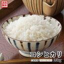 【送料無料】【新米】【広島県産】令和1年産コシヒカリ10kg精米(白米)