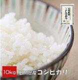 【家庭応援】 コシヒカリ 10kg (10kg×1) 石川県産 米 精白米 【令和元年産】送料別 【39ショップ対応】