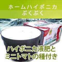 水耕栽培キット【ホームハイポニカ ぷくぷく】※ 送料・代引手数料無料 ※