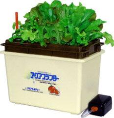 初めての水耕栽培に最適!手軽にご家庭で野菜作りが楽しめます。【送料無料!】 水耕栽培キット...