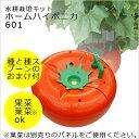 水耕栽培 キット ホームハイポニカ 601 トマト型の水耕栽...